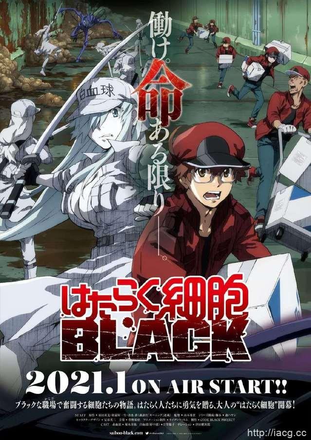 「工作细胞BLACK」动画pv公开,明年1月开播