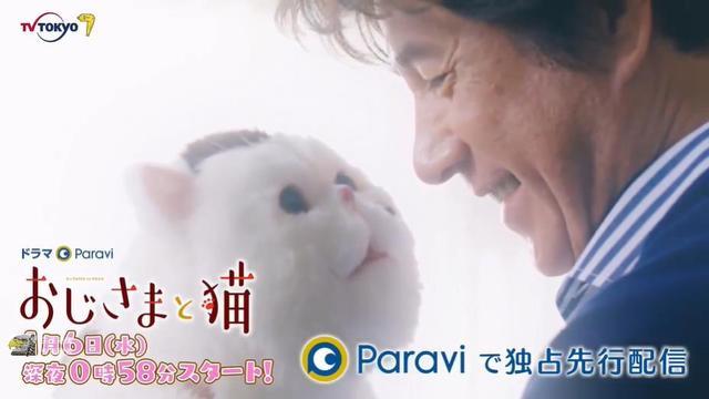 漫改日剧「大叔与猫」公开预告PV