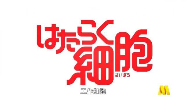 「工作细胞 第一季」中文配音版血小板片段公开