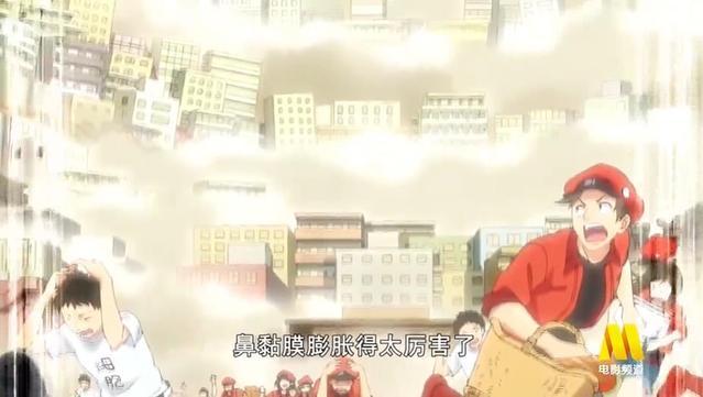 「工作细胞」第一季中文配音版PV2公开