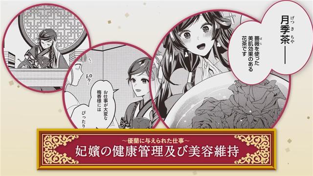 轻小说「后宫妃的管理人」特别PV公开