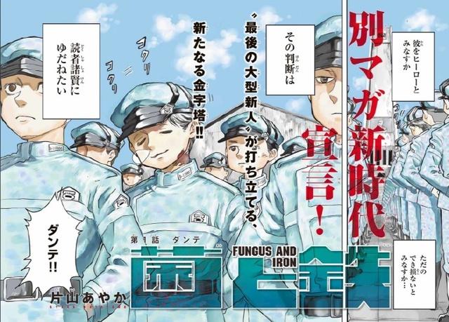 谏山创全新漫画作品「菌与铁」连载开启